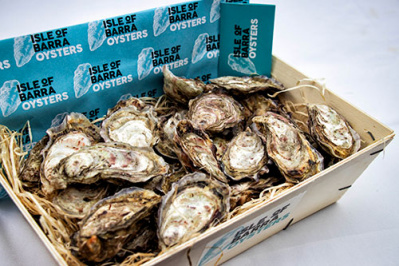 oysters_six_1770623757